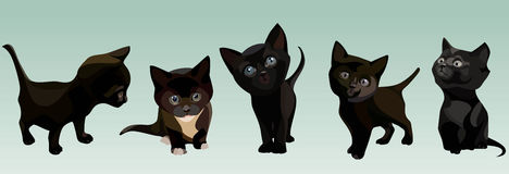 Five cartoon cute black kitten in different poses Royalty Free Stock Images