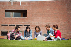 Five casual students sitting on the grass using laptop Stock Image