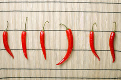 Five chili peppers lay at right direction and bigg Stock Photography