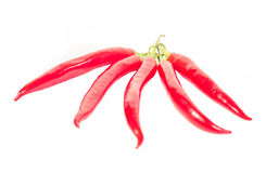 Five chili peppers lying on white background Royalty Free Stock Photos