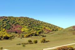 five Color mountain autumn scenery stock image