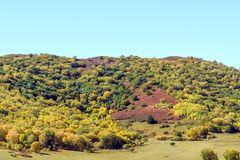 five Color mountain autumn scenery Royalty Free Stock Photography