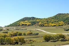 five Color mountain autumn scenery stock photo