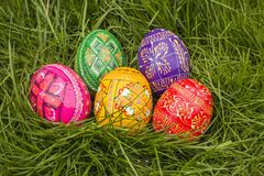 Five Colored Easter Eggs. Some Colored Easter Eggs in Grass Royalty Free Stock Images