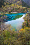 Five colored lake, Jiuzhaigou, China Stock Photography