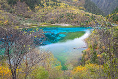Five colored lake, Jiuzhaigou, China. Five flower lake or Five colored lake in Jiuzhaigou national park, Sichuan, China Royalty Free Stock Photography