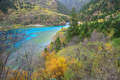 Five colored lake, Jiuzhaigou, China. Five flower lake or Five colored lake in Jiuzhaigou national park, Sichuan, China Royalty Free Stock Image