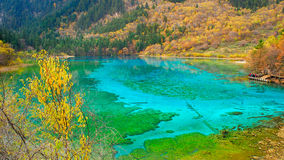 Five colored lake Royalty Free Stock Photography