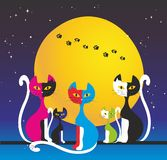 Five colorful cats Stock Photo