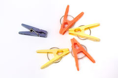 Five colorful clothespins Stock Photos