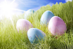 Five Colorful Easter Eggs On Sunny Grass Stock Photos