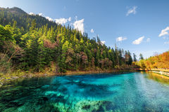 The Five Coloured Pool with azure water among autumn woods Stock Image