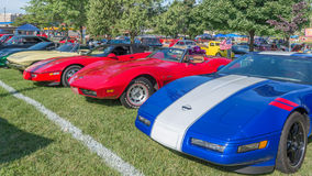 Five Corvettes at the Woodward Dream Cruise Royalty Free Stock Photos