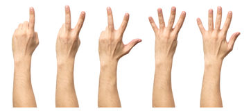 Five counting male hands isolated on white. Background Stock Images