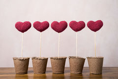 Five crocheted hearts in peat glasses Royalty Free Stock Photos