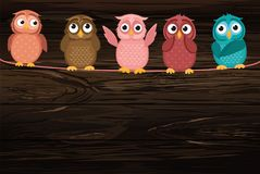 Five cute colored owlet sitting on a rope. A red hearts with a p. Icture hanging on a rope.  Valentine`s Day. Vector illustration on wooden background. Greeting Stock Photography