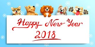 Five cute dog and poster on blue. The five cute red and yellow dogs of different breeds and a white banner or a poster and inscription of Happy New year 2018. A Stock Photo