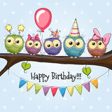 Five Cute Owls. Five Owls on a brunch with balloon and bonnets Royalty Free Stock Photo