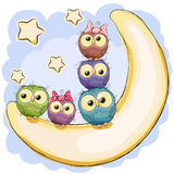 Five Cute Owls. Is sitting on the moon Royalty Free Stock Image