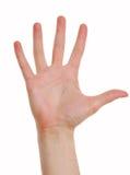 Five (destiny). Man hand. five. Isolated object. destiny stock image