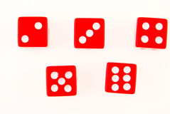 Five dice on white Stock Images