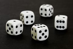 Five Dices. Five playing dices on black background Stock Image