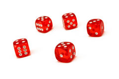 Five dices. Five dices isolated on white stock image