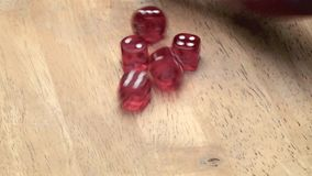 Five dices stock video footage