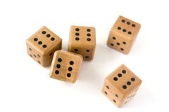 Five dices isolated Stock Photography