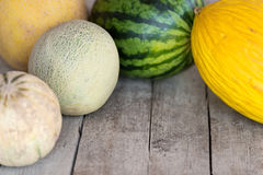 Five different melons Royalty Free Stock Photo