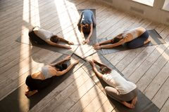Five young females doing Child Pose during yoga session stock images