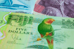 Five dollars from Fiji Stock Photos