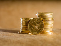 Five Dollars gold coins Stock Images