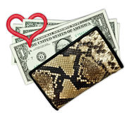 Five dollars in the purse Stock Images