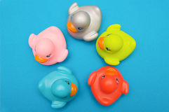 Five ducks plastic multi-colored Royalty Free Stock Photo