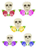 Five duets of skulls and roses Stock Images