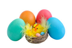 Five Easter eggs and chicken Royalty Free Stock Photos