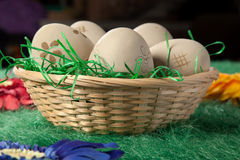 Five eggs in a basket on green fake grass Stock Image