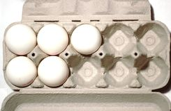 Five Eggs Stock Photo