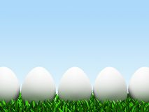 Five eggs in row isolated on white background. 3D royalty free illustration