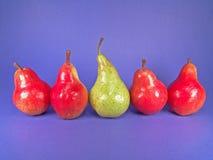 Five European Pears (One Green). Red, green European organic pears stock photo