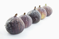 Five figs Stock Image