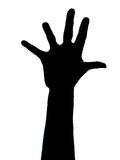 Five fingers. Isolated five fingers on hand vector illustration