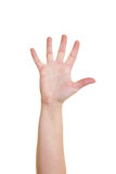 Five fingers Royalty Free Stock Image
