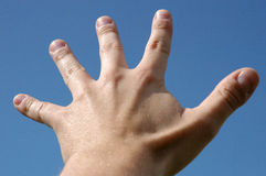 Five fingers. On hand royalty free stock photo