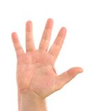 Five fingers. Man's hand. Stock Photos