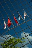 Five flags on glass building near tree Stock Photos