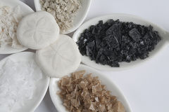 Five Flavors of Flaked Sea Salt with Sand Dollars Stock Photography