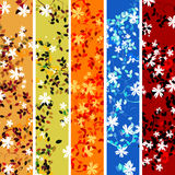 Five floral banners. Beautiful floral composition for web banners, headers Stock Image