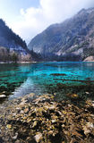 Five Flower Lake at Jiuzhaigou National Park, Sich Stock Image